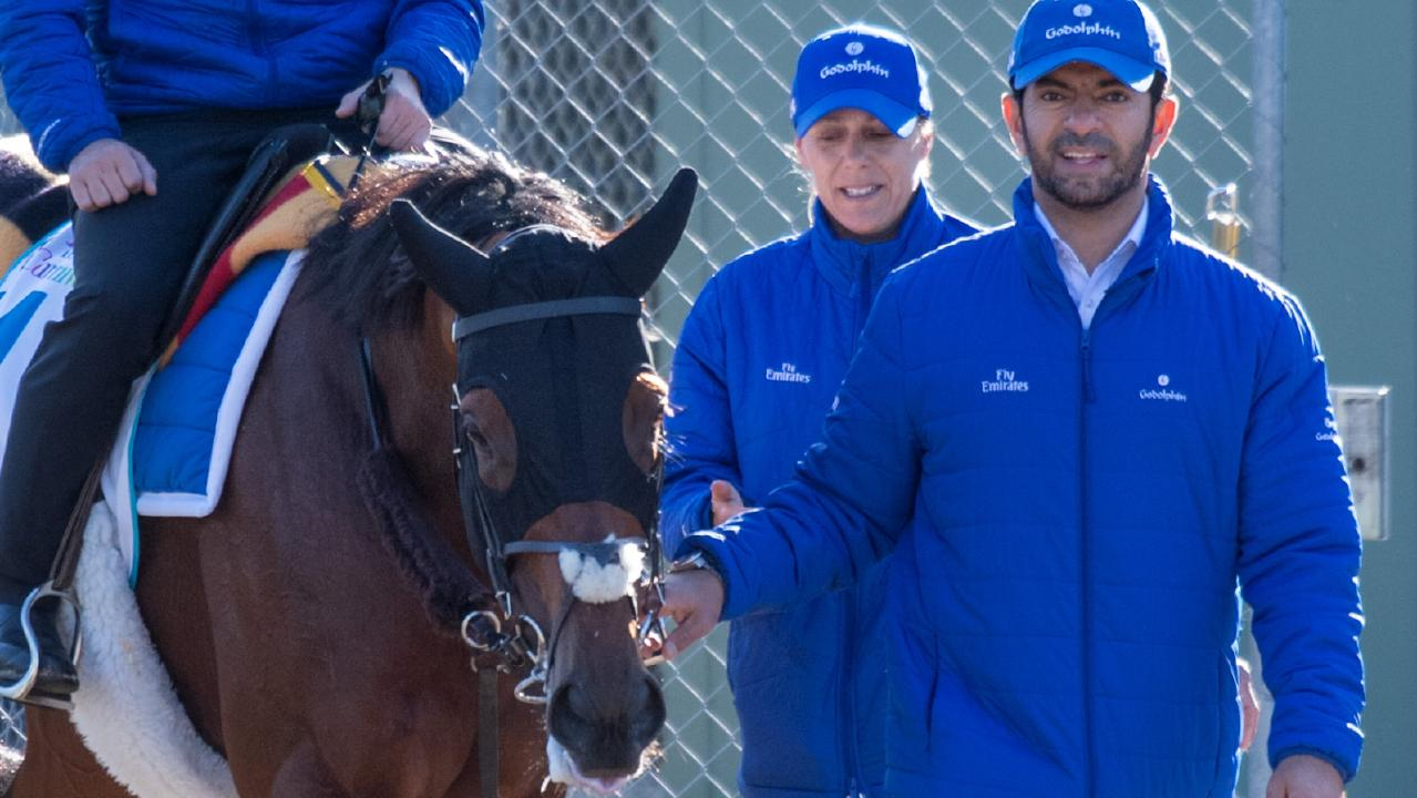 Benbatl returns from work at the Werribee Quarantine Centre, led in by trainer Saeed Bin Suroor. Picture: Jay Town