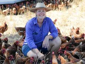 Where does your food come from: CQ eggs cared for with love