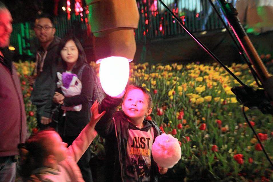 INTERACTIVE: The Luminous light and art show will run from 5pm tonight at the Tondoon Botanic Gardens.