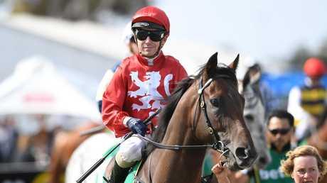 Jockey Stephen Baster on Geelong Cup winner Runaway. (AAP Image/Julian Smith)