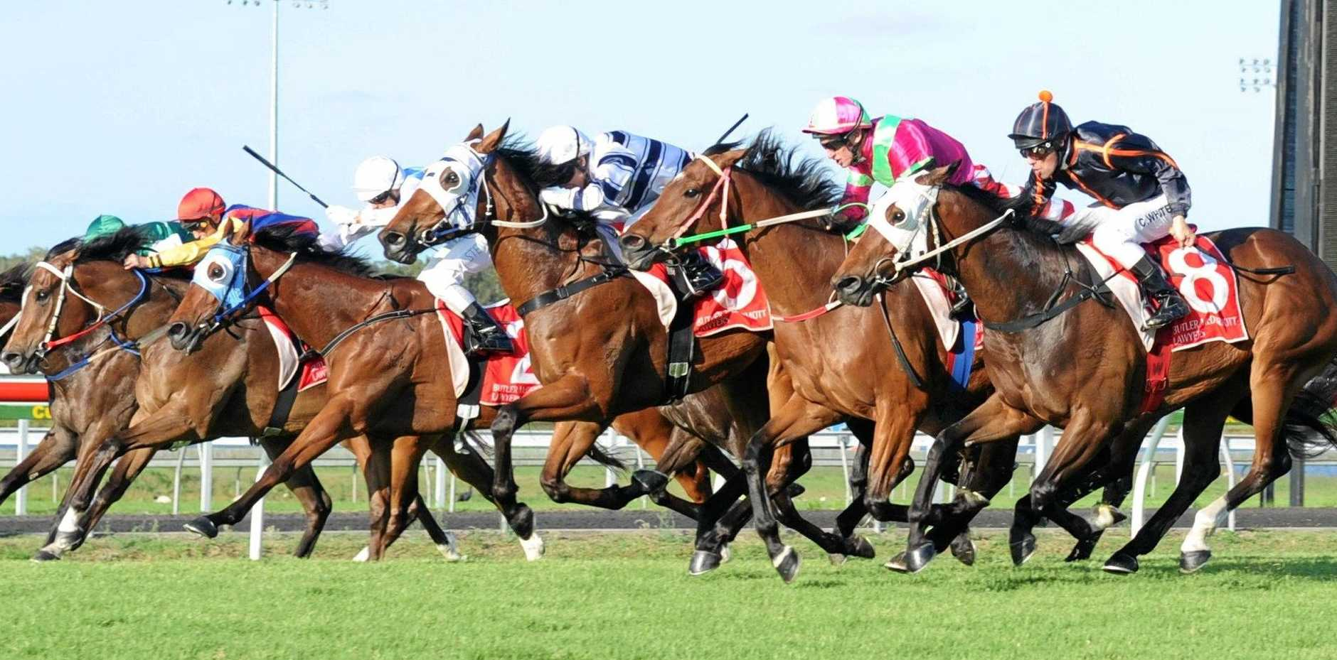 RACING: The action will be on at Corbould Park on Melbourne Cup Day.