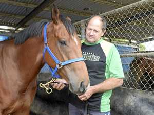 Former Weir galloper steps out at new home