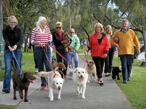 Paws Next Door rallies pet owners to celebrate diversity