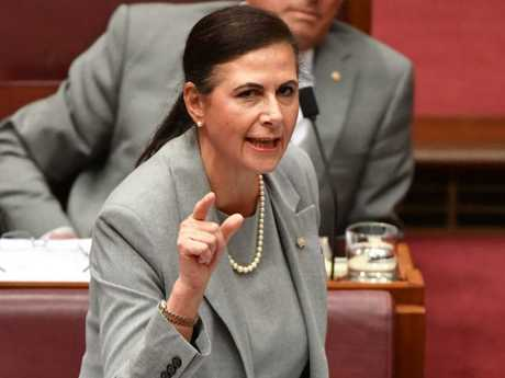 Senator Concetta Fierravanti-Wells got a scathing response from China. Picture: AAP Image/Mick Tsikas