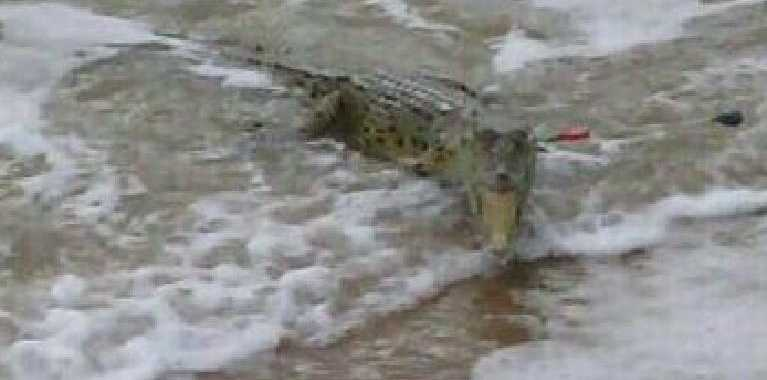 Cardwell's Gwenda Kingston reeled this crocodile in. Photo: SUPPLIED