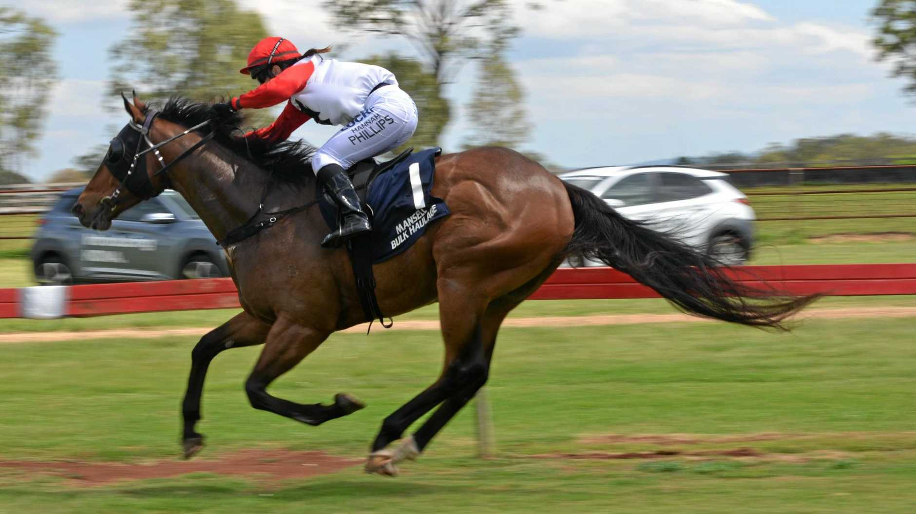 READY FOR RACING: Kumbia will race on Melbourne Cup Day.