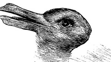 Is this a rabbit or a duck? The answer you give to this classic optical illusion says a lot about your brain, psychologists claim. It first appeared in a German magazine in 1892 under the title