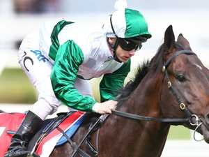 Gai gives Derby fancy a Big tick