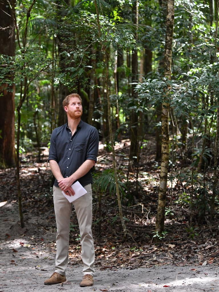 Prince Harry at Pile Valley on Fraser Island. Picture: AAP Image/Darren England