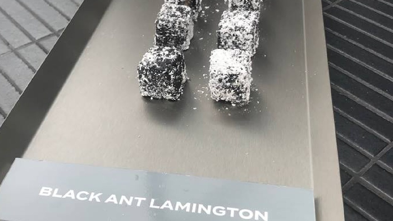 Lamingtons with bugs in them, anyone?