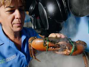 NT to make it illegal to boil mud crabs alive