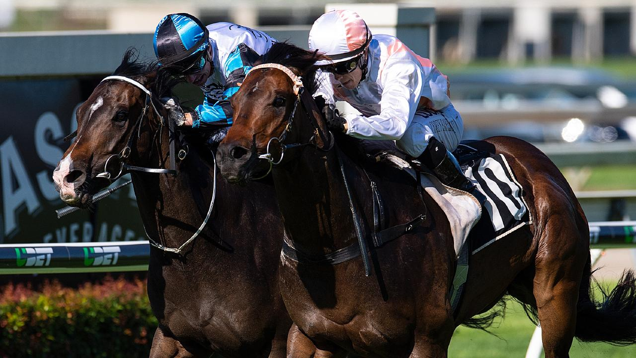 Prizemoney increases for Queensland racing will kick in from Friday. Picture: AAP