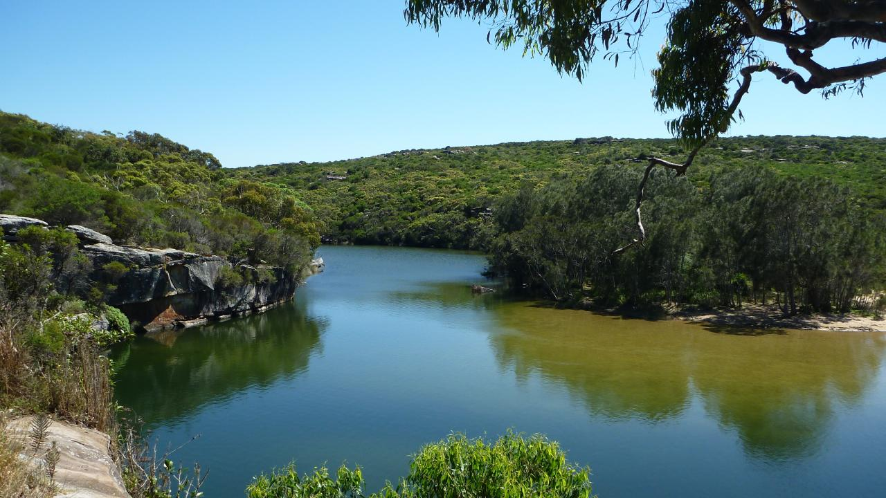 The swimming spot is one of the Royal National Park's main attractions.