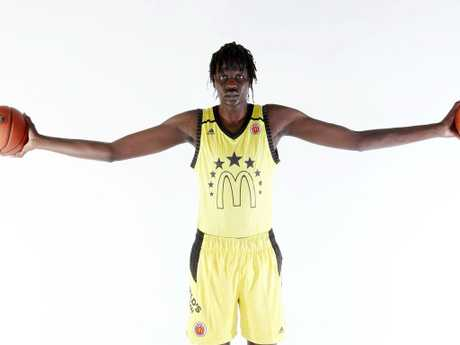We couldn't fit Bol Bol's full wingspan in this frame.