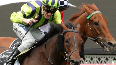Ventura Storm takes out the Moonee Valley Gold Cup. Picture: AAP
