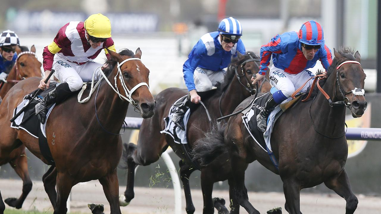 A Prince of Arran takes out the Lexus Stakes. Picture: Michael Klein