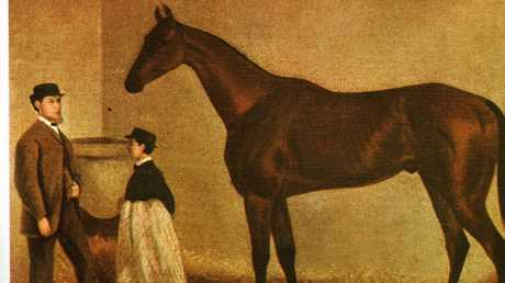 Archer, the winner of the 1861-1862 Melbourne Cup.