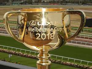 Quick form guide to the Melbourne Cup