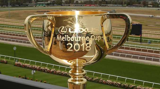 The 2018 Melbourne Cup is up for grabs. Picture: Scott Barbour/Getty Images