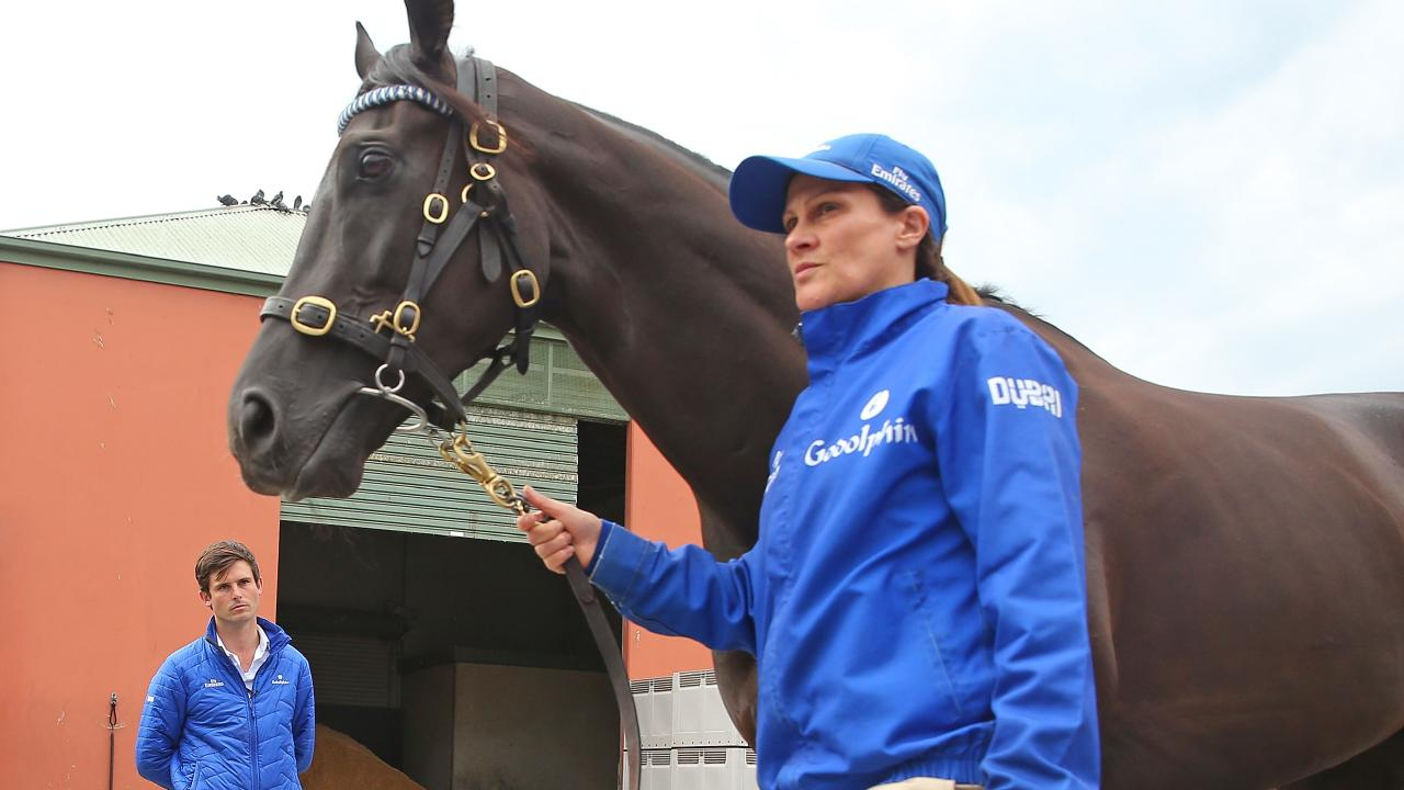 Godolphin trainer James Cummings checks over Avilius. Picture: Getty Images