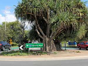 The truth about Noosa's roundabouts