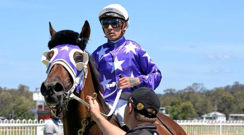 Jockey Michael McNab aboard winner Cedarwood on a historic day at Ipswich racetrack.
