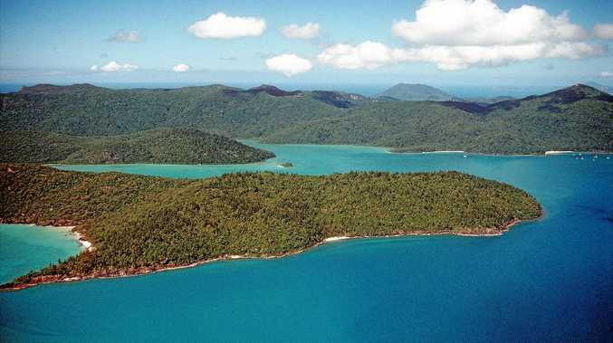 Australian man dies after shark attack in Whitsundays' Cid Harbour