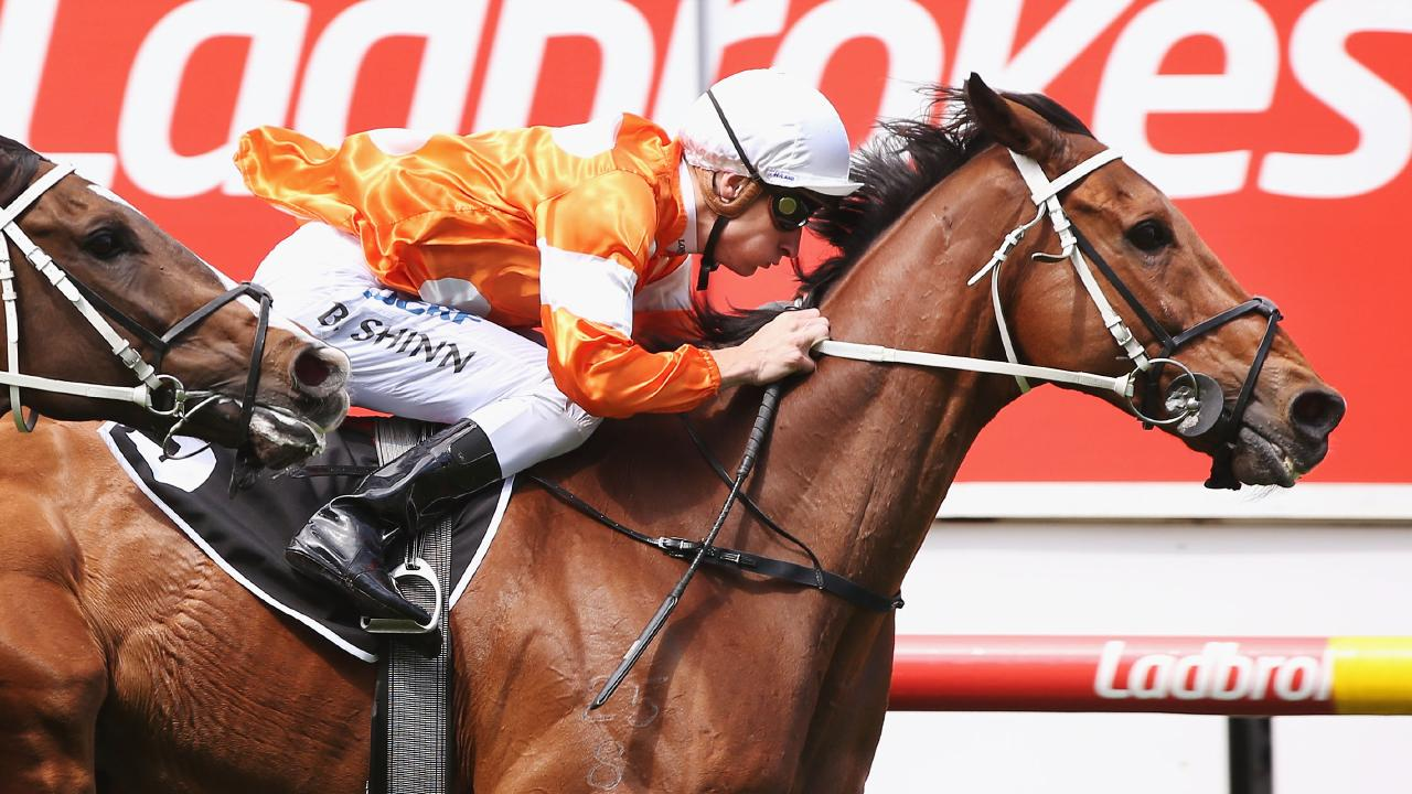 Who Shot Thebarman, ridden by Blake Shinn, wins Race 6 on Cox Plate Day at Moonee Valley. Picture: Michael Dodge