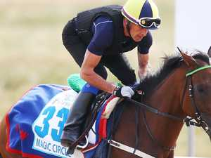 Rain on Cup Day: Which horse wins in the wet?