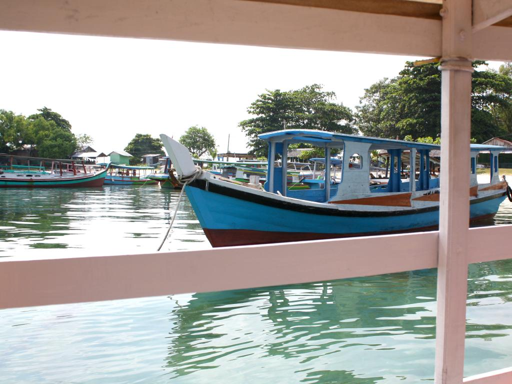 Private boat tours for next to nothing. Picture: Sangeeta Kocharekar