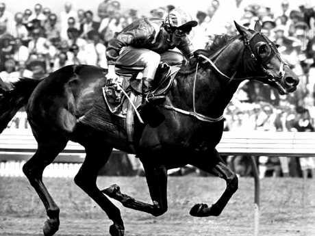 In 1986, At Talaq became Sheikh Hamdan bin Rashid Al Maktoum's first Melbourne Cup winner.