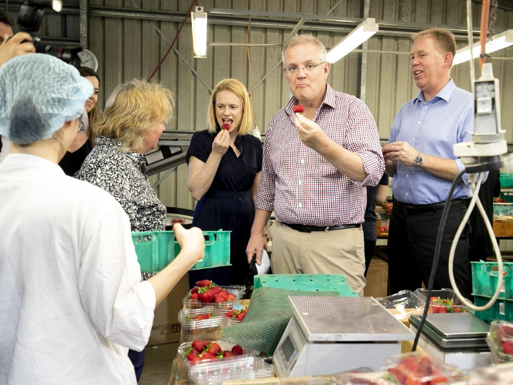 Prime Minister Scott Morrison visits a strawberry farm at Chambers Flat in Logan. Picture: AAP/Tim Marsden