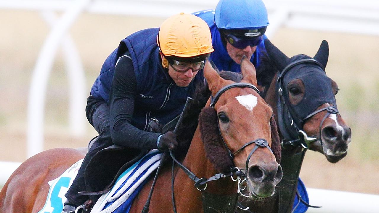 Kerrin McEvoy putting Cross Counter through its paces. (Photo by Michael Dodge/Getty Images)