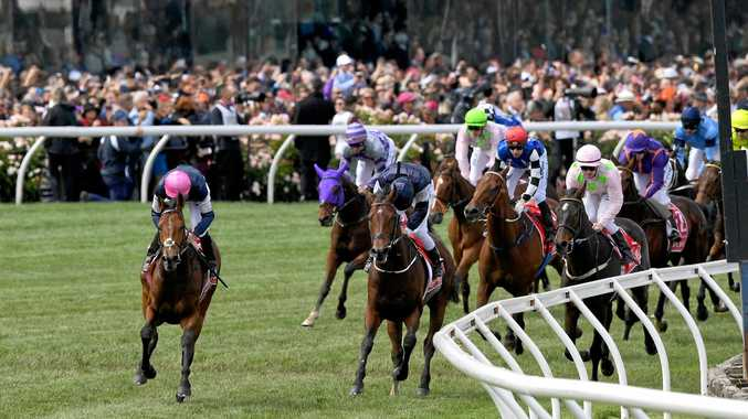 What's your best bet for this year's Melbourne Cup?