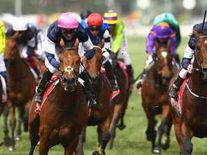 Who are rich bankers betting on for Melbourne Cup?