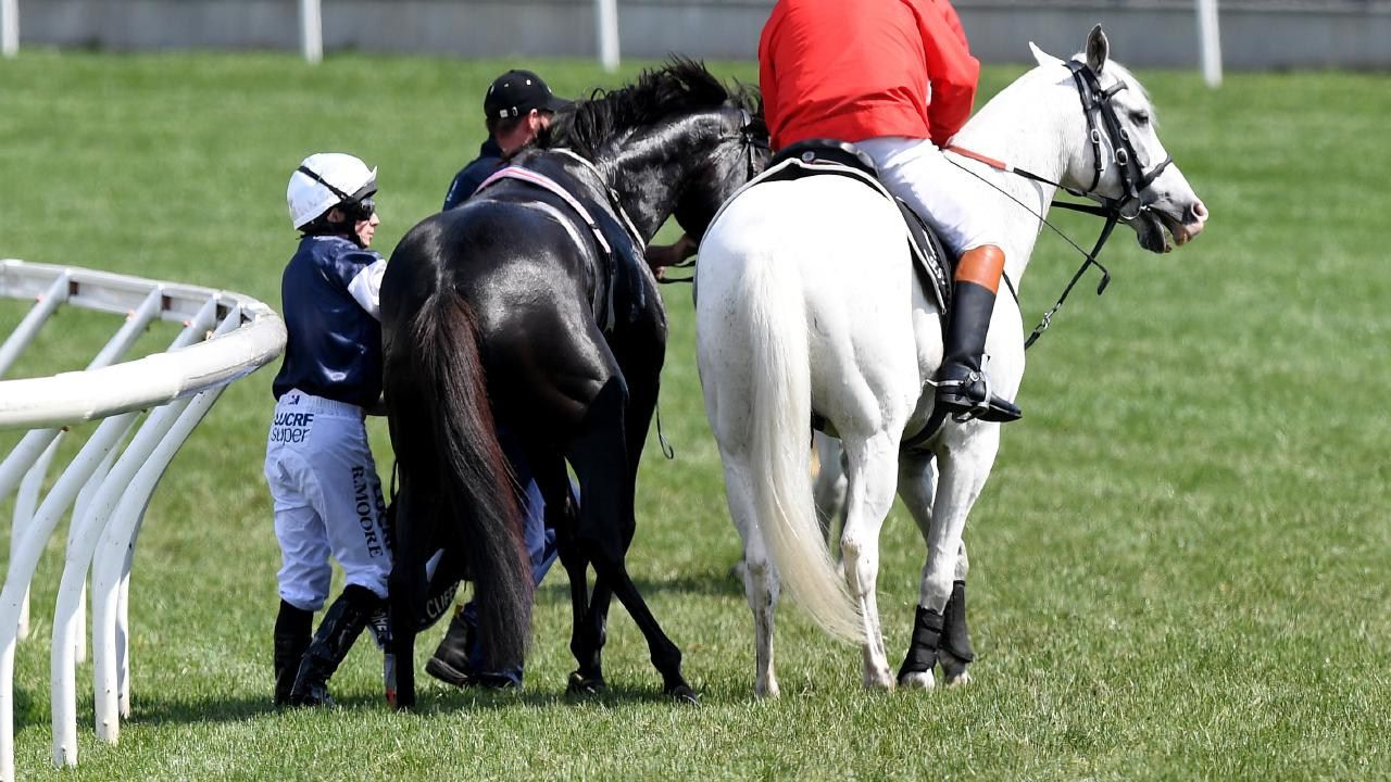 Jockey Ryan Moore on Cliffsofmoher is assisted by a race steward. Picture: Dan Himbrechts/AAP