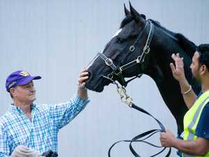 Aussie trainer says overseas horses getting in too light