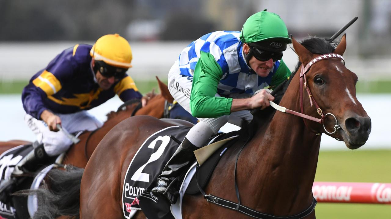 Fifty Stars in the short priced favourite in race 3.