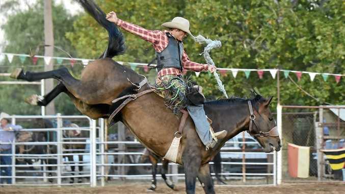 GLORY RIDER: Wandoan cowboy Cameron Webster.