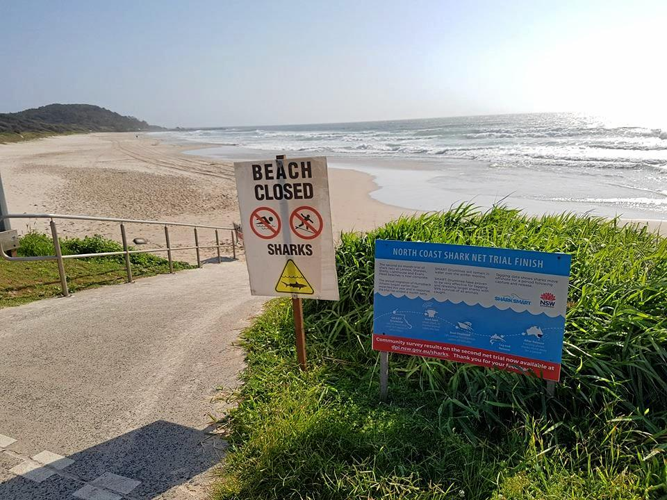 Beaches are closed after a shark attack at Shelly Beach, Ballina.