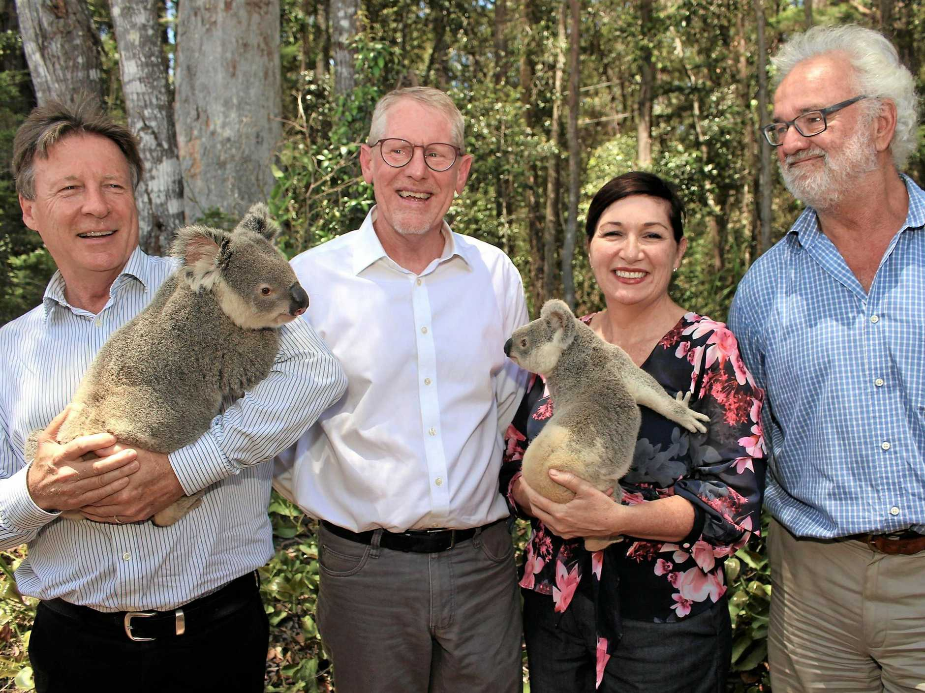 (L-R) Tony Wellington (Noosa Mayor), David West (HQPlantations Group Manager Stewardship), Leeanne Enoch (State Minister for Environment and the Great Barrier Reef, Science, and the Arts), and Dr Michael Gloster (Noosa Parks Association President).
