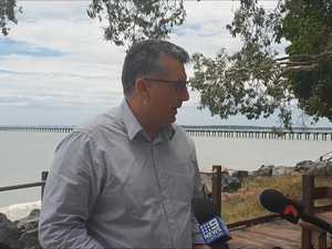 Hinkler MP calls for shark cull