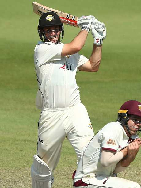 Mitch Marsh in action for WA in the Sheffield Shield.
