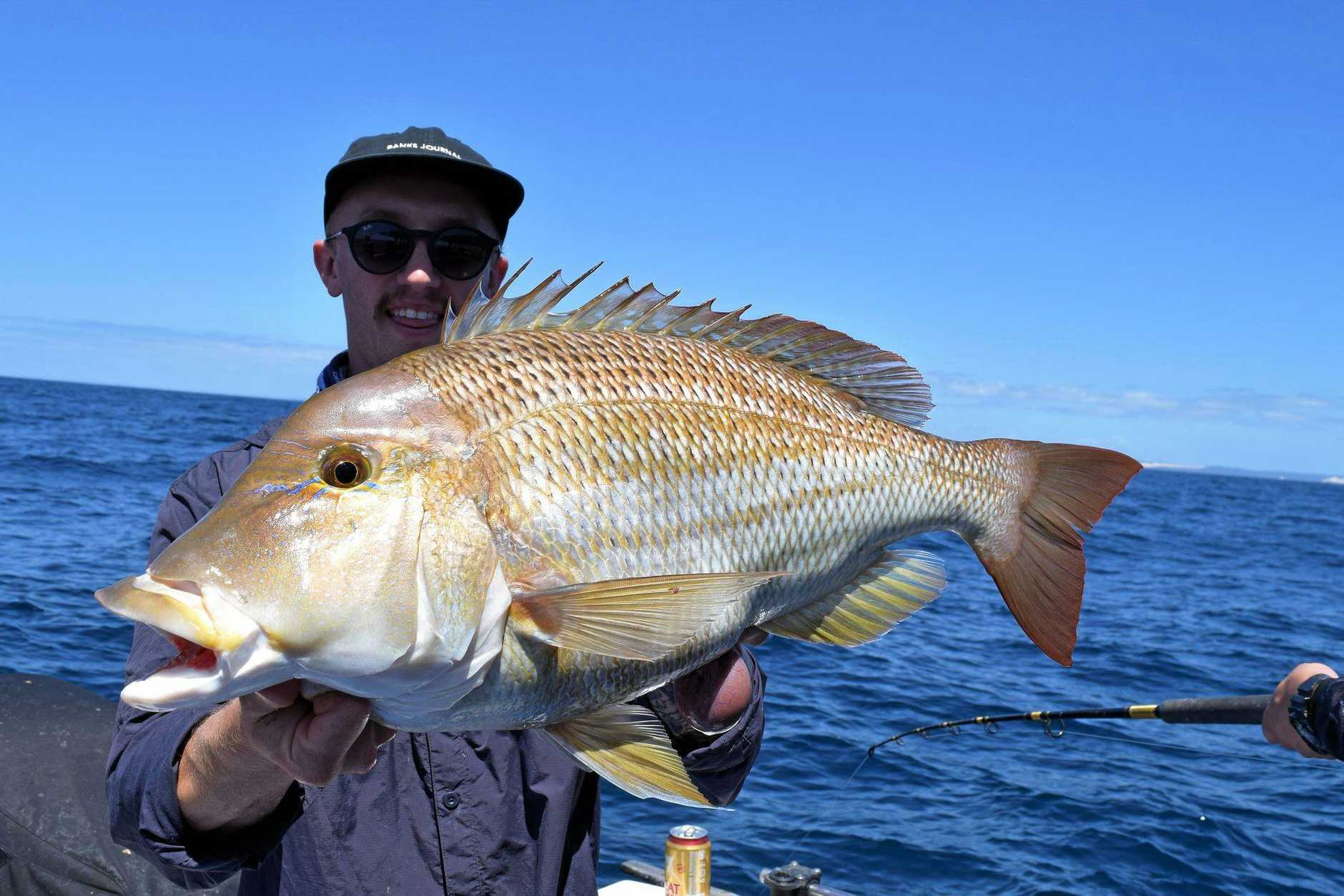 The Rainbow Escape Charters crews caught some quality fish last Sunday north of Double Island Point,