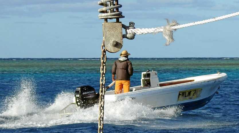 Live trout fishermen work at ground zero in their dories, making them expert in shark behaviour.