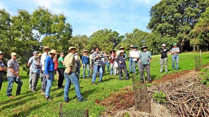 A Rural Landholder Initiative field day at Rosebank.