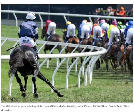 HORROR: The Cliffsofmoher goes down in this year's Melbourne Cup.