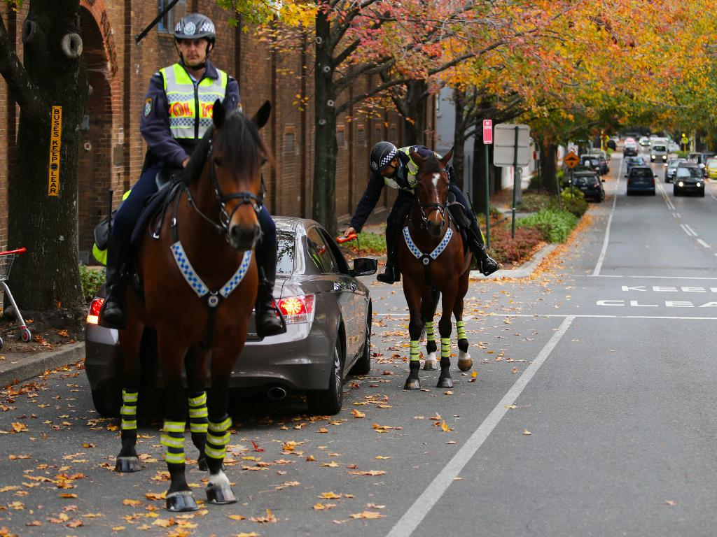 Senior Constable Nathan Towney on King (testing) and Senior Constable Robert Downing on Prince carry out breath-testing duties. Picture: Rohan Kelly