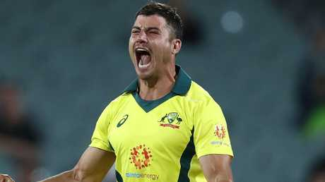 Marcus Stoinis was on fire in the field.