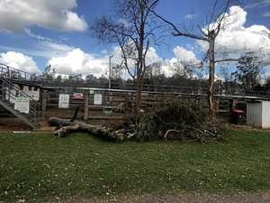 Coolabunia Saleyards storm damage
